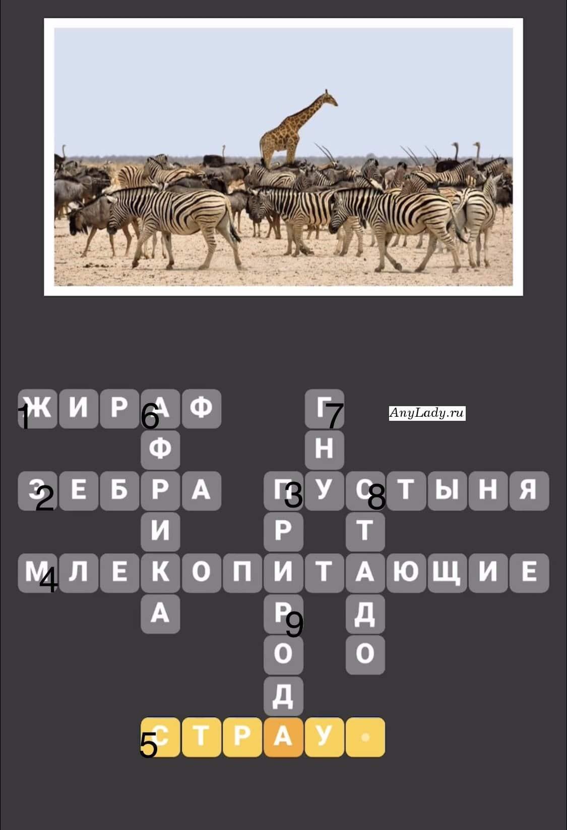 По горизонтали:  1. Жираф  2. Зебра  3. Пустыня  4. Млекопитающие  5. Страус По вертикали:  6. Африка  7. Гну  8. Стадо  9. Природа