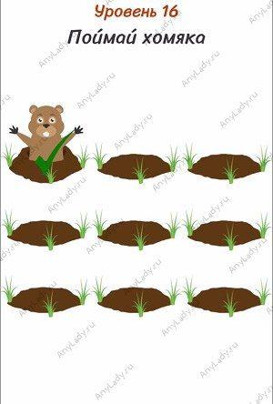 Уровень 16 Поймай хомяка. Нажмите несколько раз по норам в земле, тем самым закопав их. Теперь выбирайте зверька.