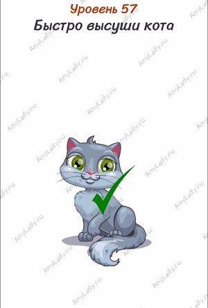 Уровень 57 Быстро высуши кота. За котом прячется фен, наведите кота на поток воздуха из фена.