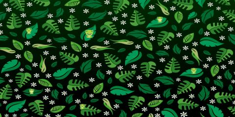 Spot the frog Уровень 23
