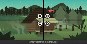 Spot the mouse Уровень 19